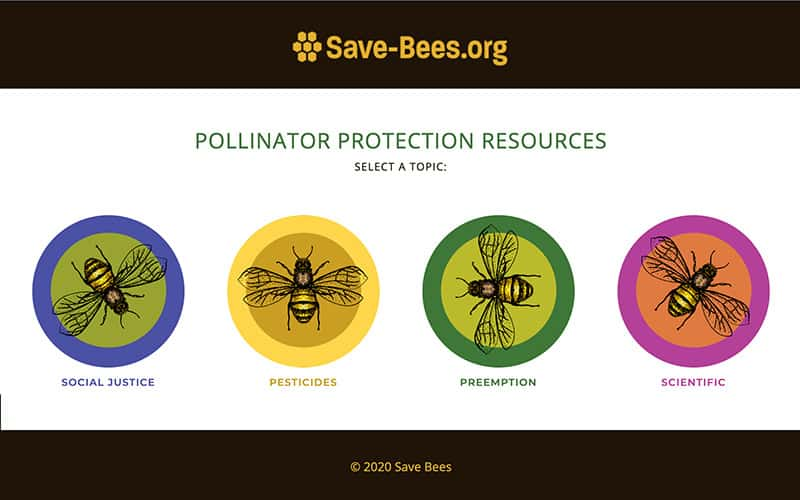 Save Our Bees